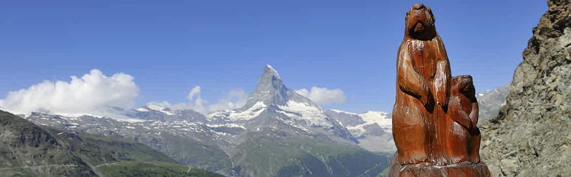 Murmelweg Zermatt 1