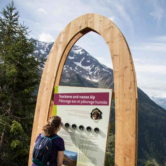 Alperlebnisweg Lauchernalp Lötschental 10
