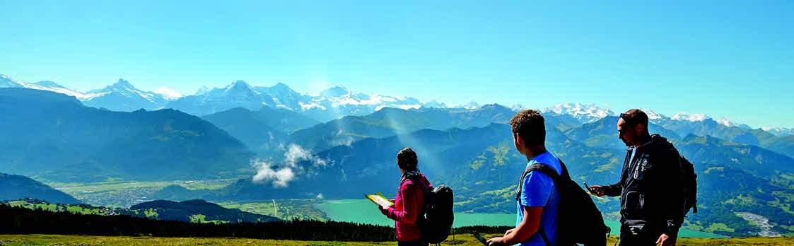 Alpen Orientierungslauf am Niederhorn 1