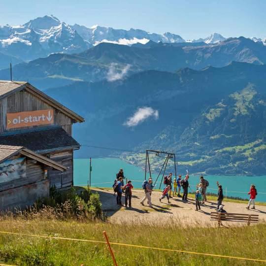 Alpen Orientierungslauf am Niederhorn 10