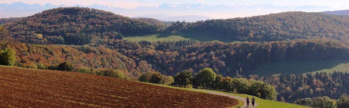 Perimukwege im Jurapark Aargau 1