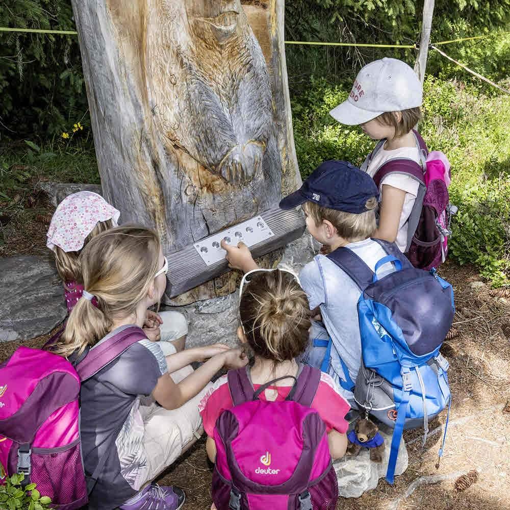 Murmeli-Trail und Luchs-Trail Lenk