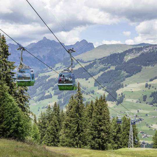 Vorschaubild zu Lenk Bergbahnen im Sommer