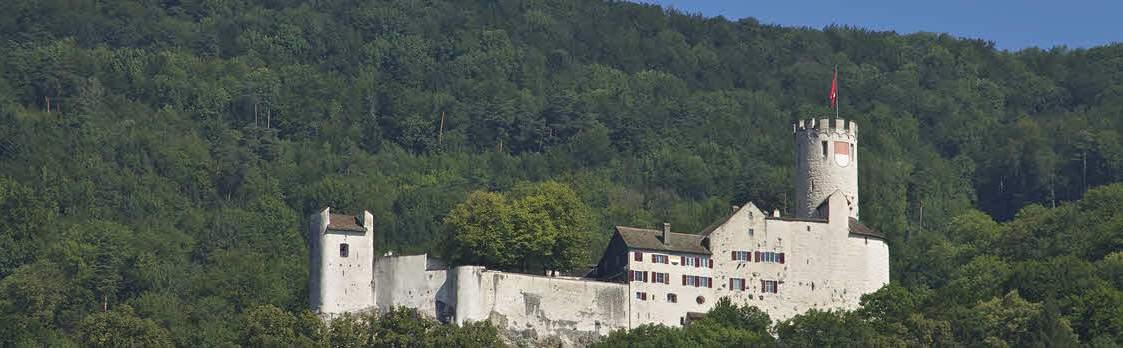 Schloss Neu-Bechburg Oensingen 1