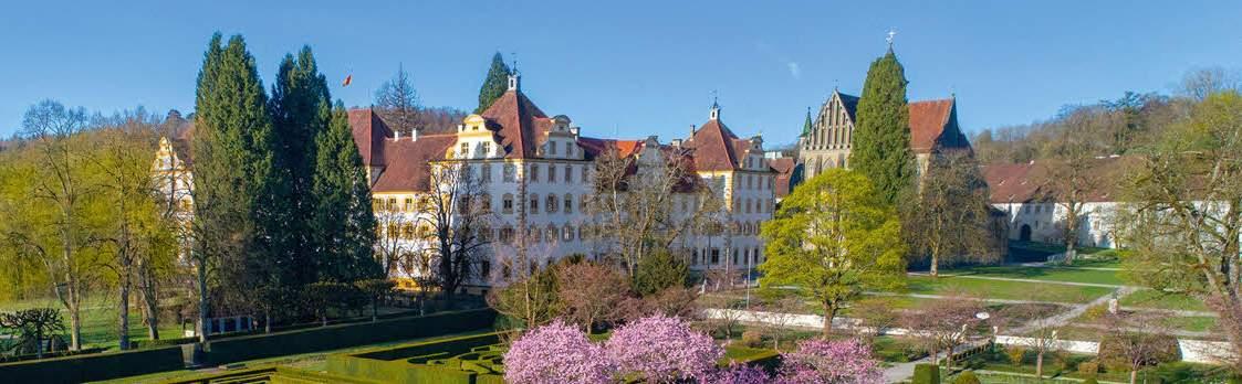 Kloster und Schloss Salem 1