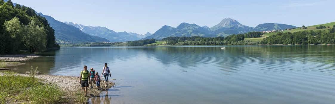Rundgang um den See