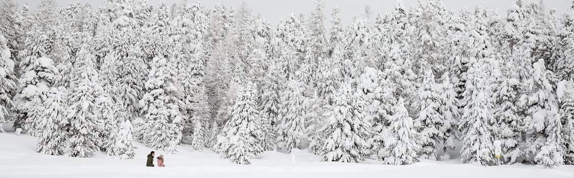 Engadin - Winterwandern 1