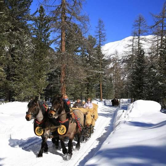 Engadin - Winterwandern 10