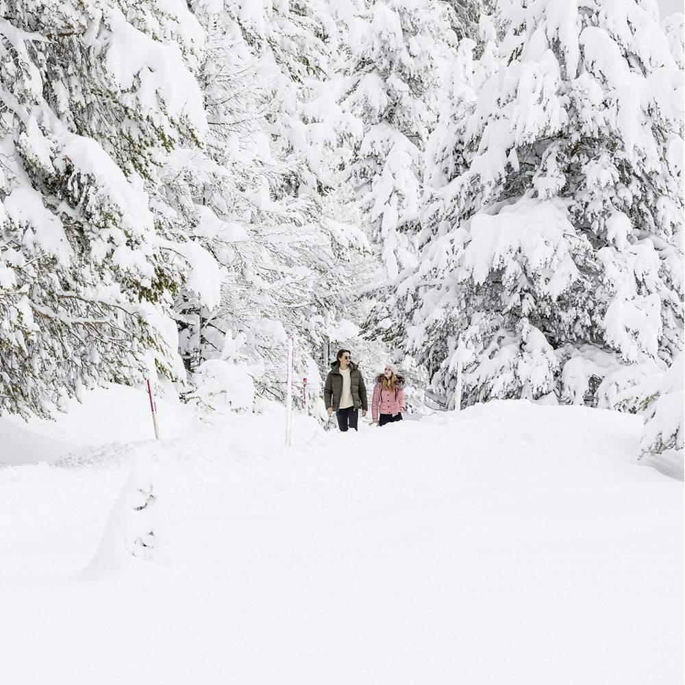 Engadin - Winterwandern