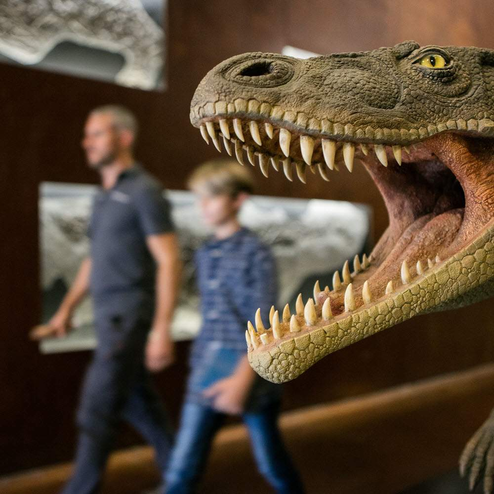 Fossilienmuseum des Monte San Giorgio in Meride