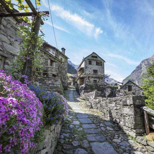 Vorschaubild zu Vallemaggia - Maggiatal