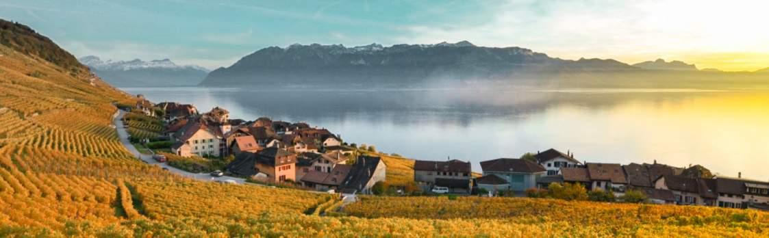 Lavaux - UNESCO Kulturlandschaft 1