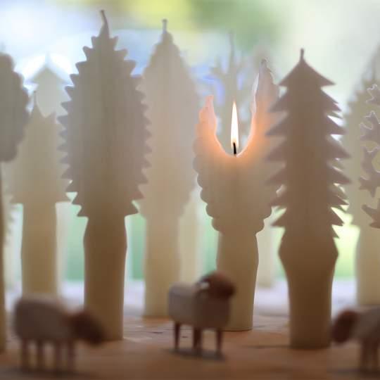 Hongler Kerzen – Altstätten 10