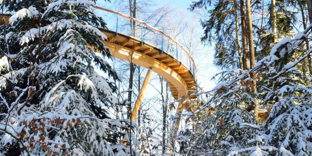 Faszination Winterwald Baumwipfelpfad Neckertal