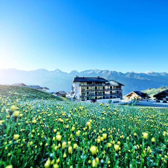 Alps Lodge - Lifestyle mit Tiroler Charme 11
