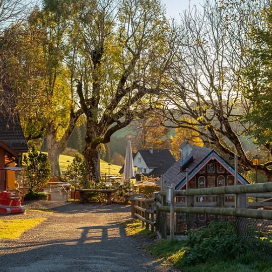 Vorschaubild zu Erlebnis Waldegg mit Spielplatz