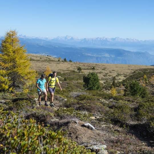Vorschaubild zu Trekking Naturns