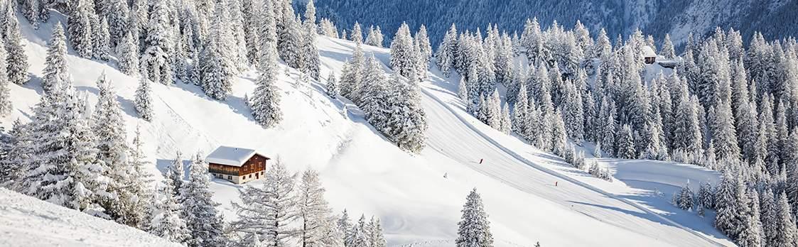 Skigebiet Bergbahnen Brandnertal 1