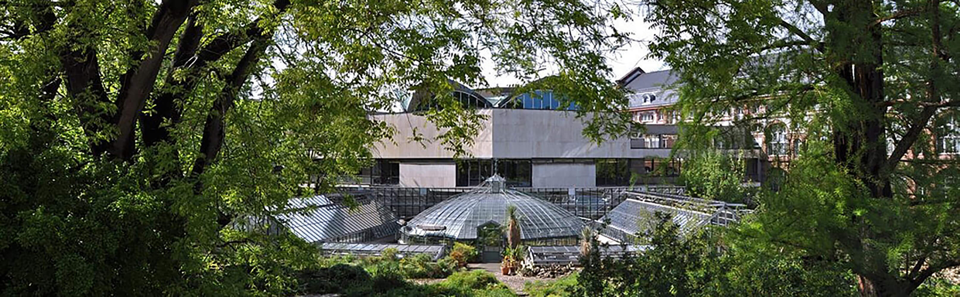 Botanischer Garten der Universität Basel 1