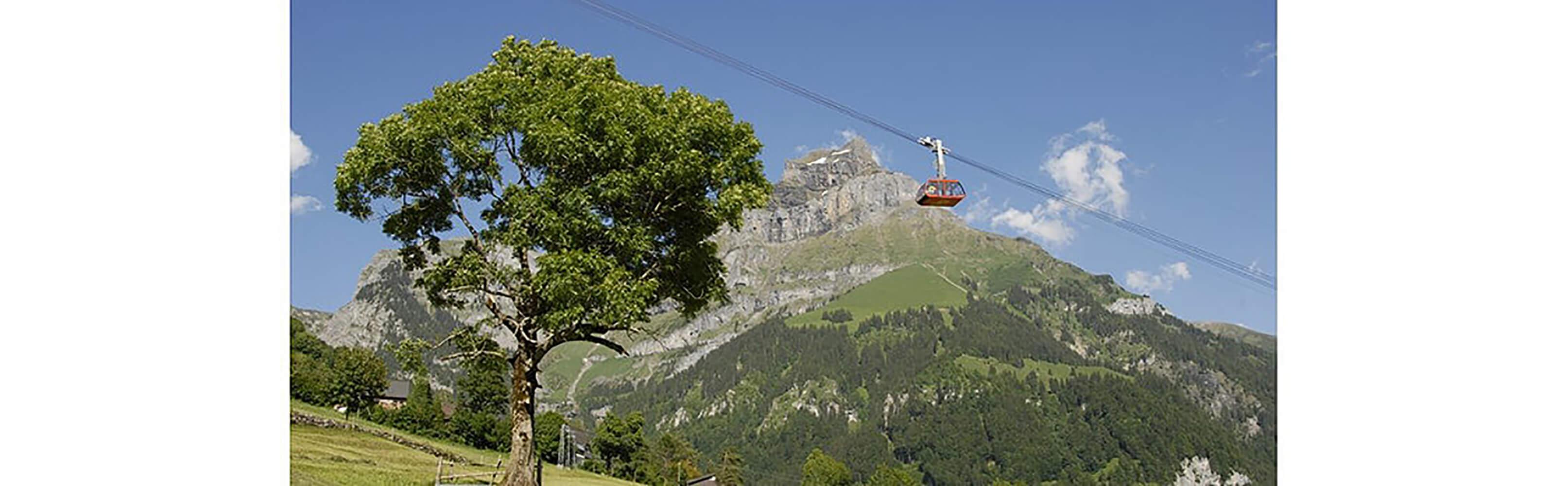 Brunni-Bahnen - die Sonnenseite von Engelberg 1
