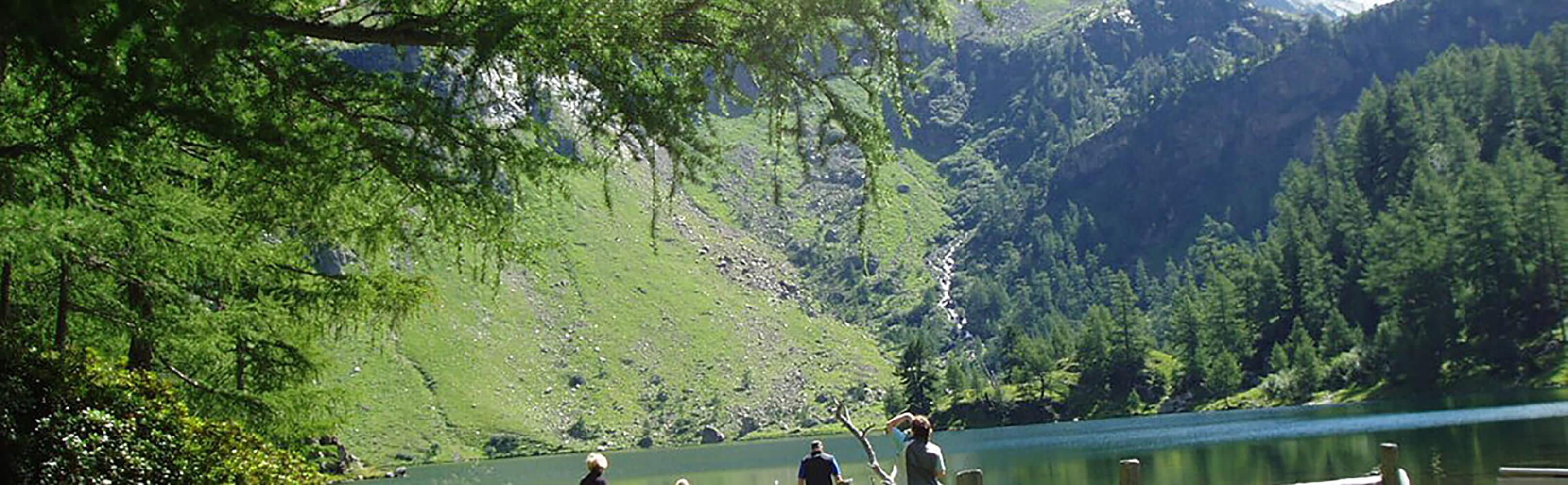 Exklusive Ferienchalets und urige Ferienwohnungen im Salzburgerland 1