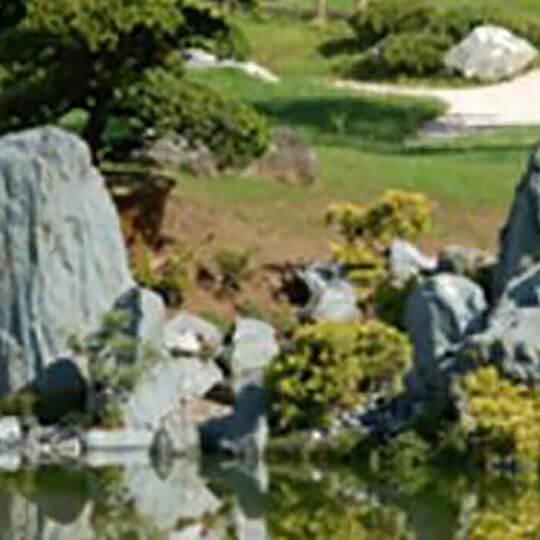 Vorschaubild zu Bonsaimuseum