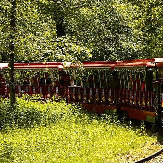 Wild- und Freizeitpark Allensbach – der Action-Park am Bodensee. 10