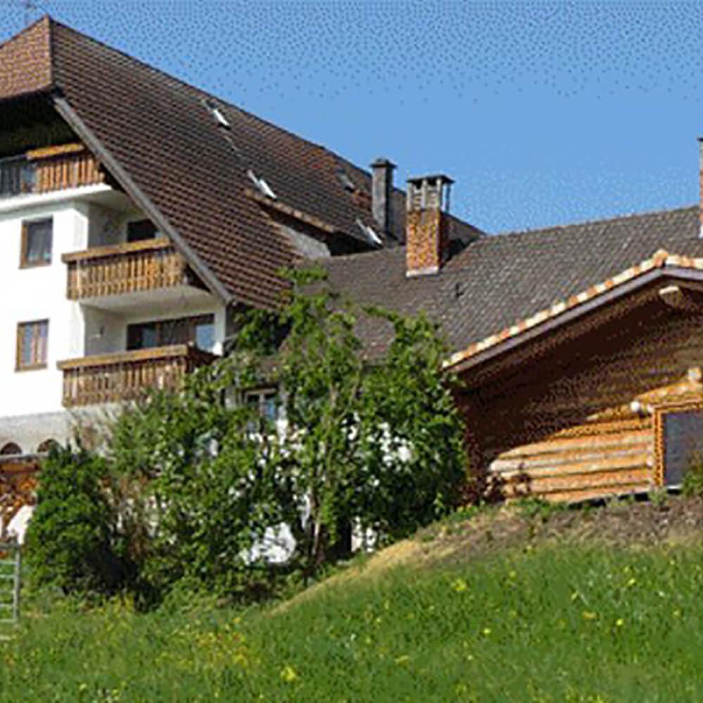 Familienfreundlicher Bauernerhof im Schwarzwald