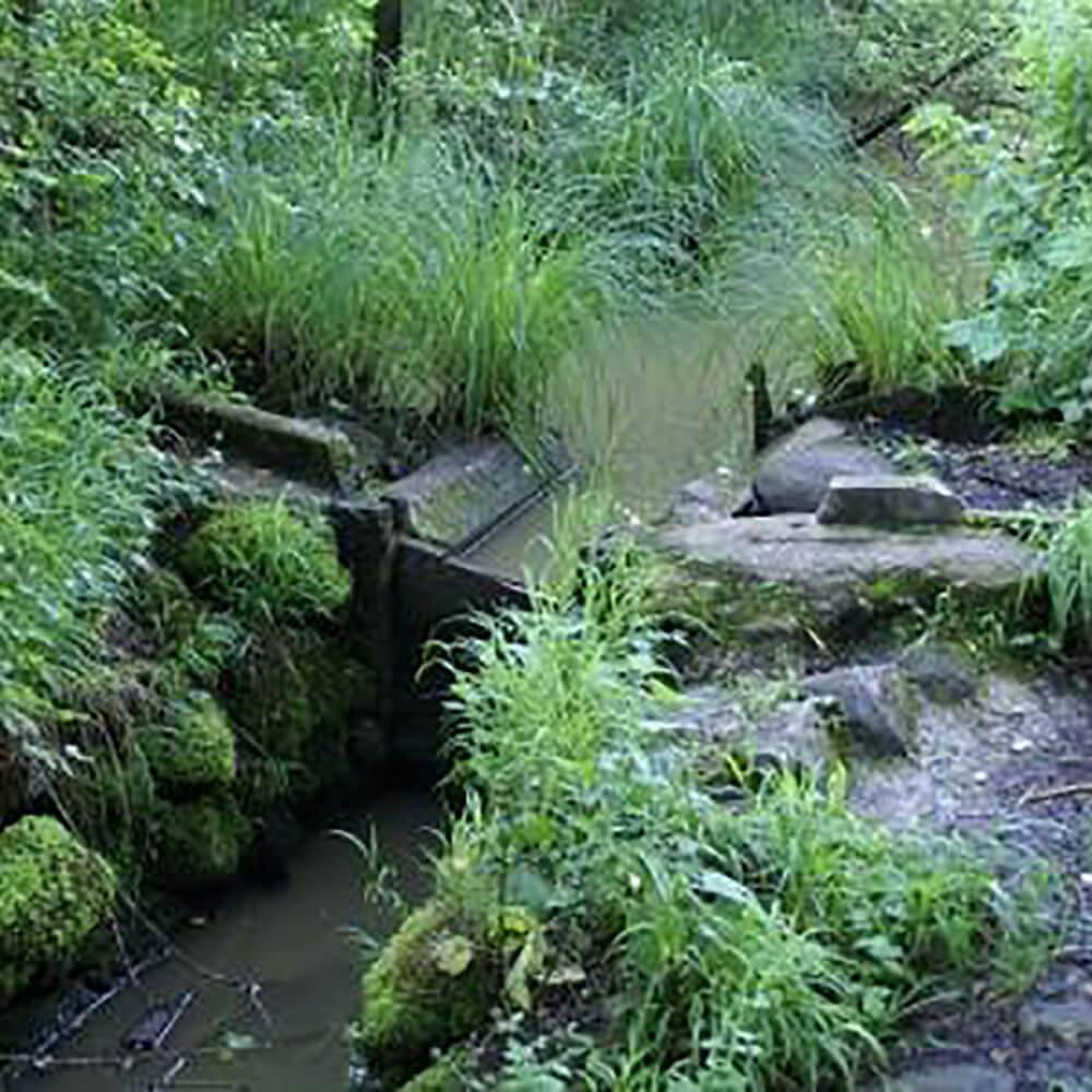 Naturschutzgebiet Hudelmoos