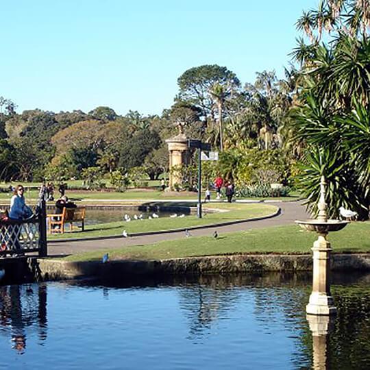 Vorschaubild zu Royal Botanic Gardens (Sydney)