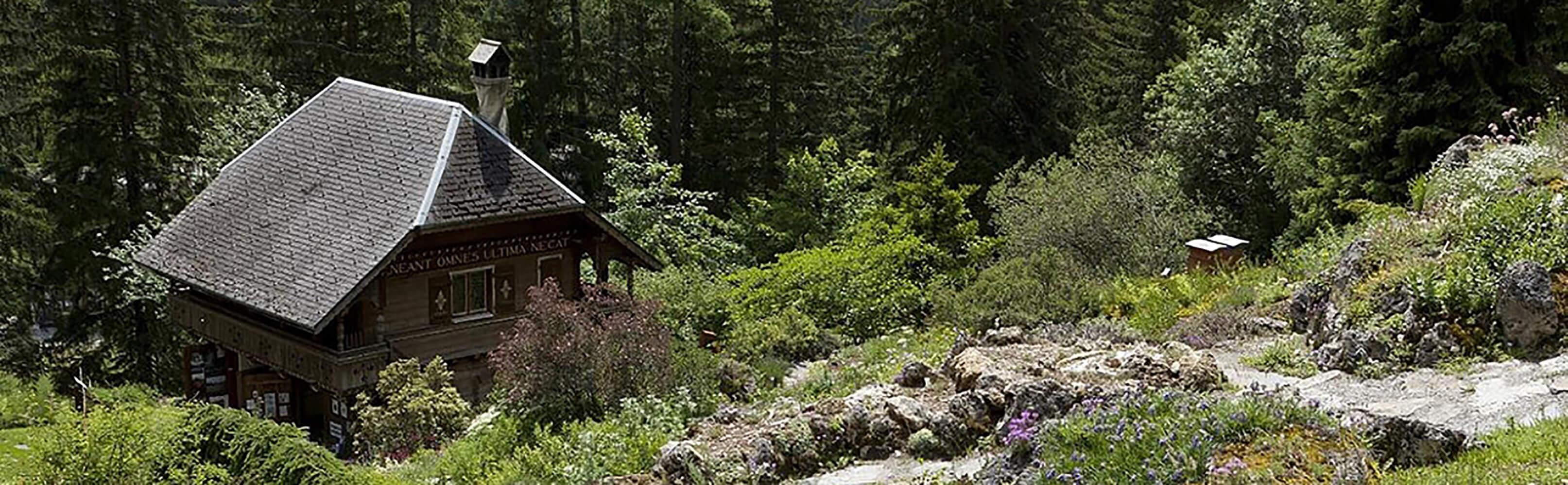 Der botanische Alpengarten Flore-Alpe Champex-Lac 1