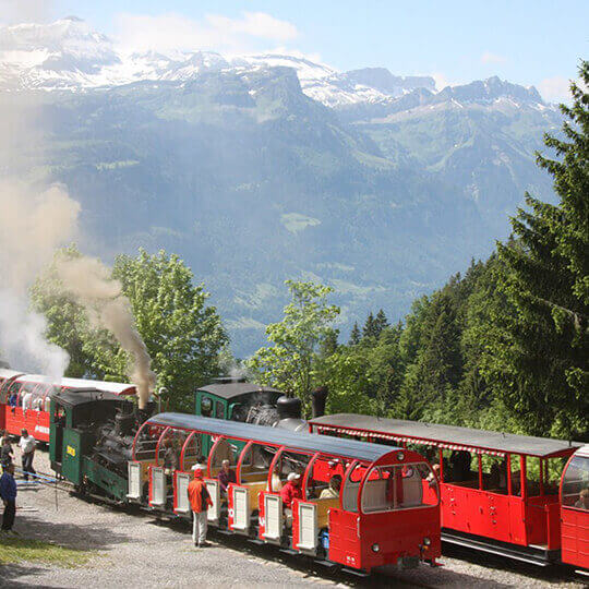 Brienz Rothorn Bahn - Ein Erlebnis fürs Leben 10