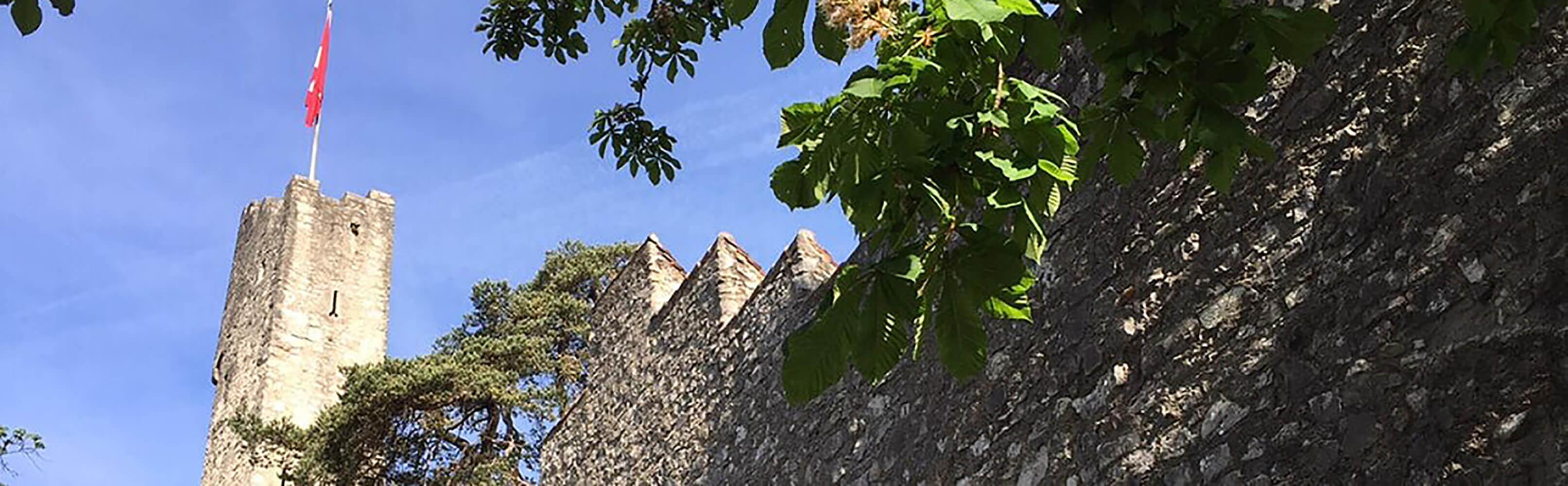 Ruine Stein 1