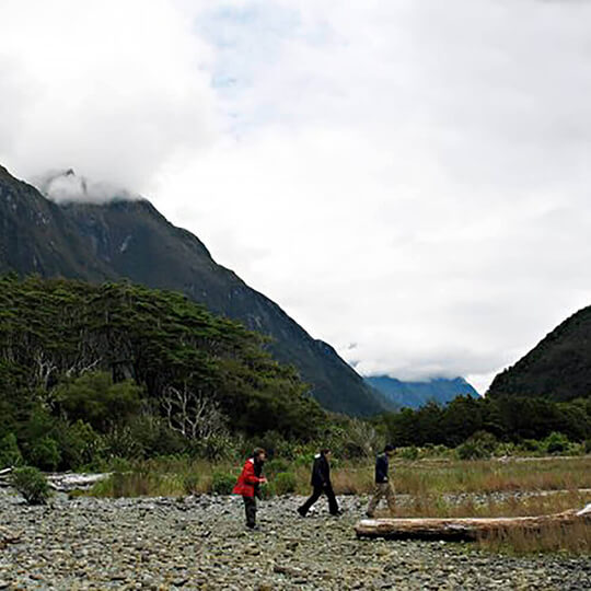 Vorschaubild zu Milford Sound