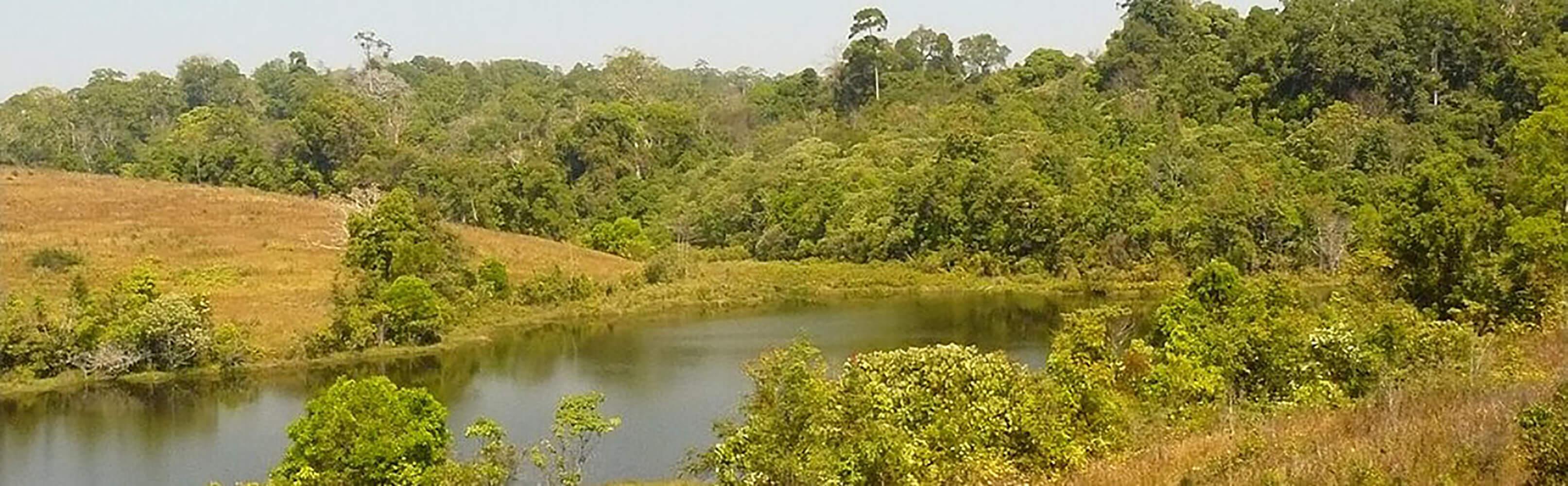 Khao-Yai-Nationalpark 1