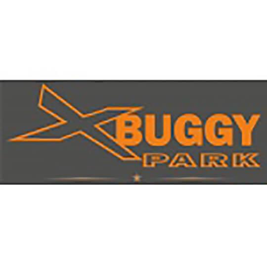 Logo zu E-Cross Buggy auf Schnee und Eis: Fahrspass pur