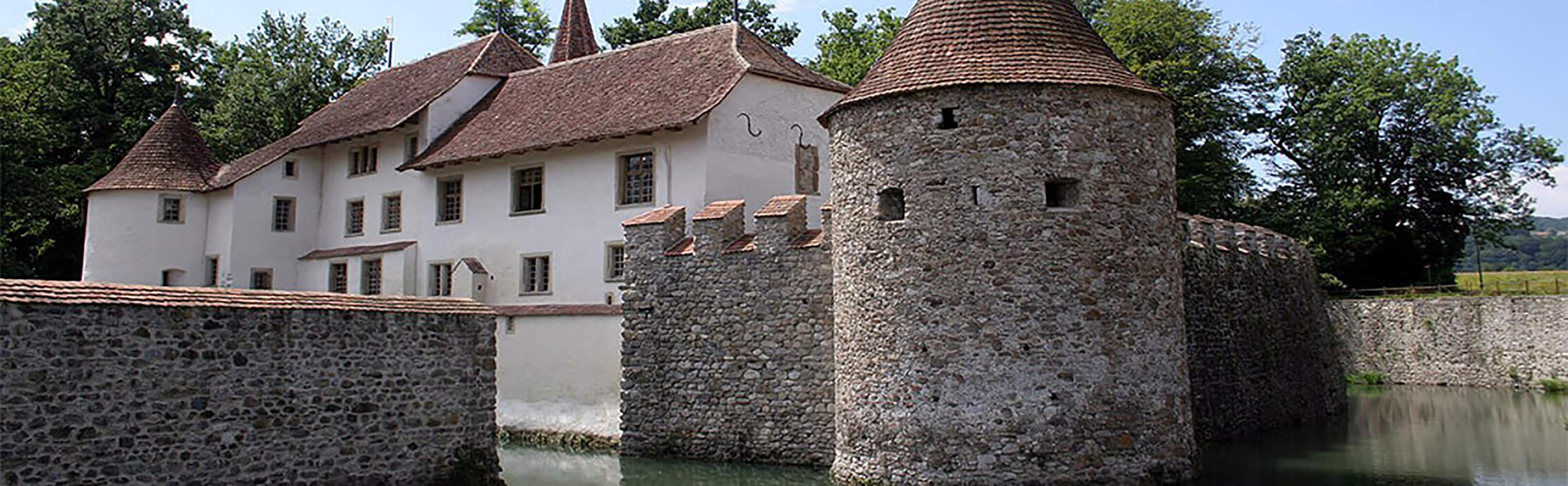 Schloss Hallwyl, Seengen 1