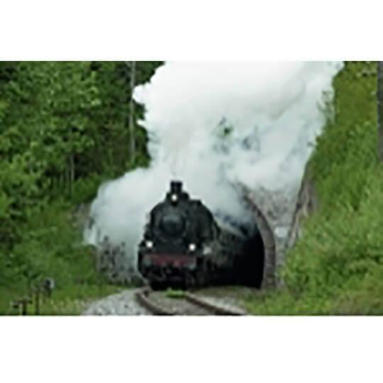 Logo zu Historische Dampf- und Dieselzugfahrten mit der Sauschwänzlebahn