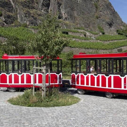 Der P'tit Sédunois, der touristische Zug von Sion 10