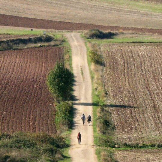 Jakobsweg Fahrradtour mit Vuelta Rad- und Wandertouren 10