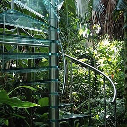 Vorschaubild zu Botanischer Garten der Universität Basel