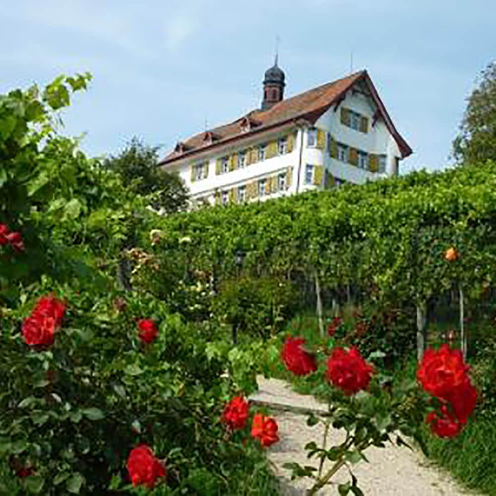 Schloss Dottenwil Wittenbach