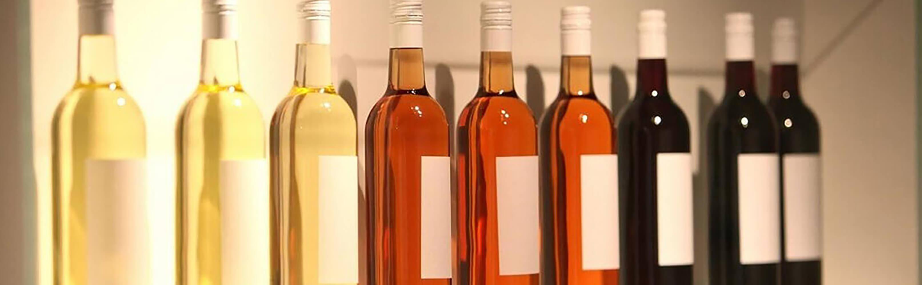 Musée de la vigne et du vin - Weinmuseum Aigle 1