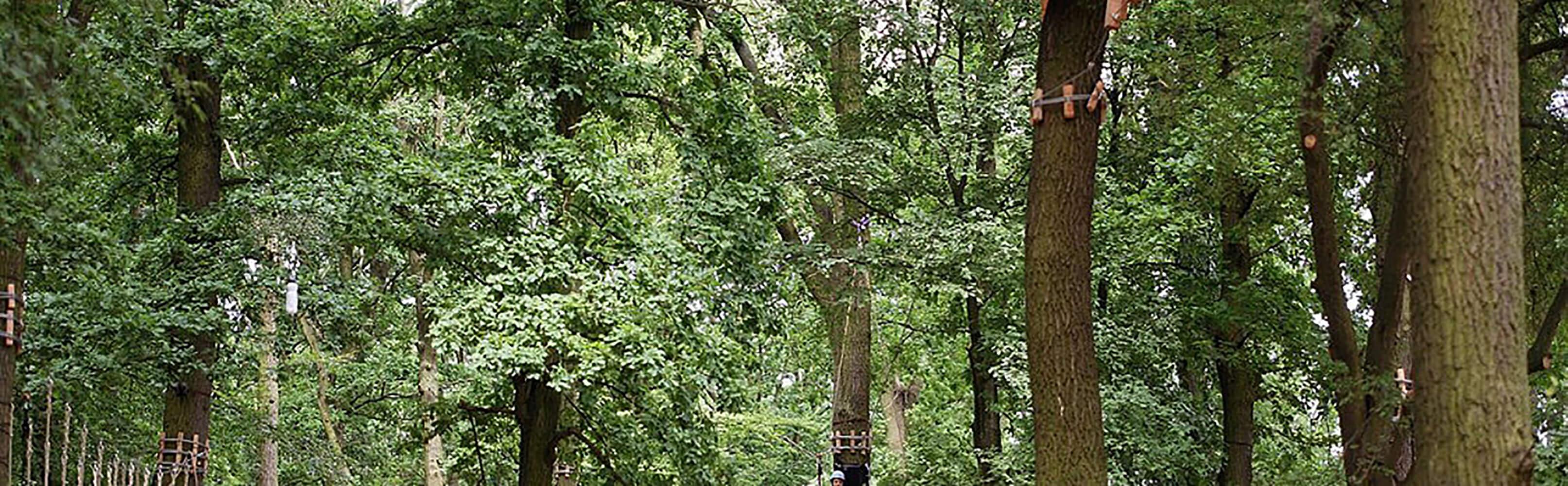 monkeyman Hochseilgarten 1