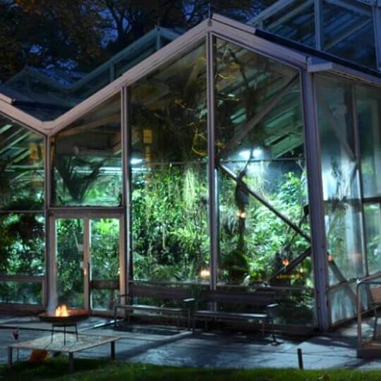 Botanischer Garten der Universität Basel 10