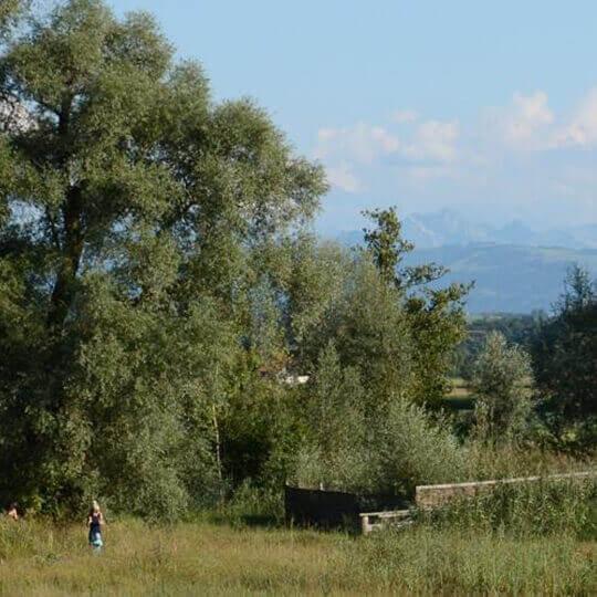 Naturstation Silberweide Mönchaltorf 10