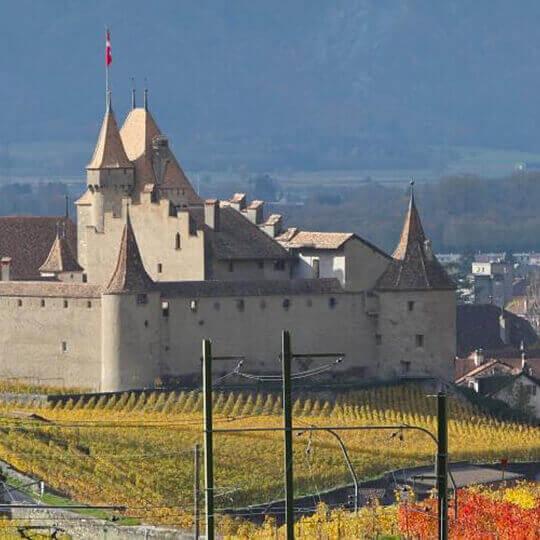 Musée de la vigne et du vin - Weinmuseum Aigle 10