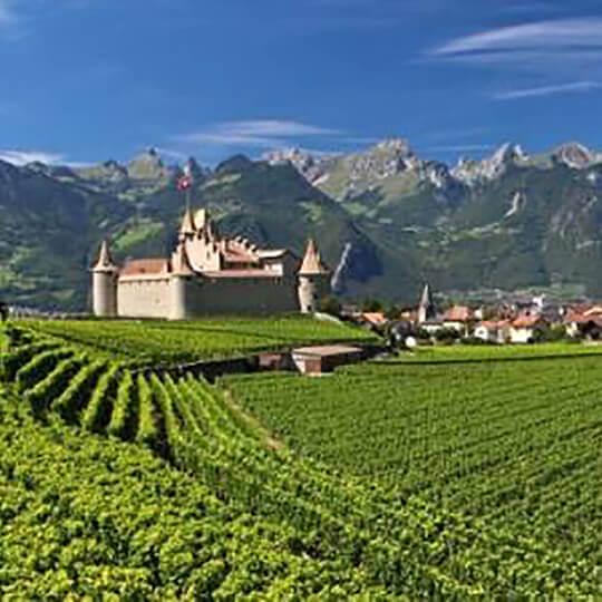 Musée de la vigne et du vin - Weinmuseum Aigle