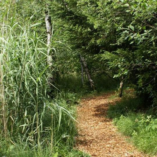 Naturschutzgebiet Hudelmoos 10