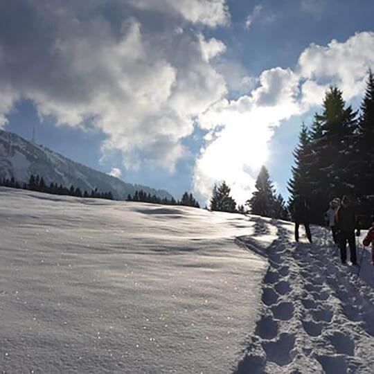 Vorschaubild zu Schneeschuhwandern in Bayern